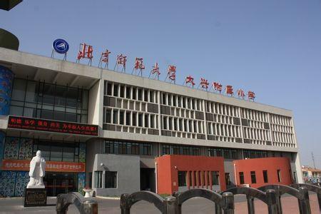 北京市师范大学实验小学 北师大附小 照片 学校 我要搜学网
