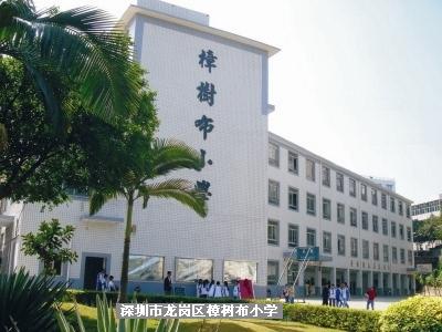 深圳市龙岗区龙城高级中学图片